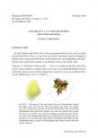 Exposé Bourbaki 1120 : Anti-gravité à la Carlotto-Schoen (d'après Carlotto et Schoen)