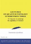 Lectures on quantum topology in dimension three