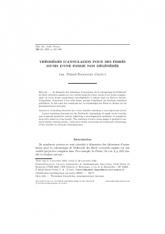 Théorèmes d'annulation pour des fibrés munis d'une forme non dégénérée