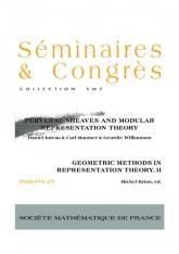 Faisceaux pervers et théorie des représentations modulaires