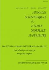Cohomologie locale et support pour les catégories triangulées