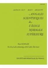 Sur la cohomologie $p$-adique de la tour de Lubin-Tate