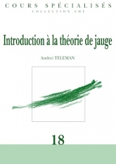 Introduction à la théorie de jauge