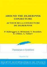 Autour de la conjecture de Zilber-Pink
