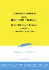 Dimer Models and Random Tilings