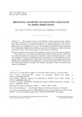 Géométrie birationnelle des feuilletages associés à des dérivations simples