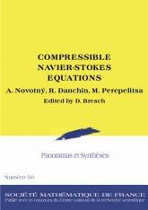 Autour du système de Navier-Stokes compressible