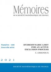 Limite hydrodynamique pour un processus d'exclusion actif