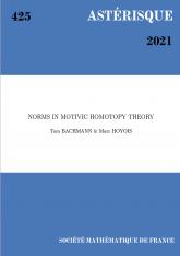 Normes en théorie de l'homotopie motivique